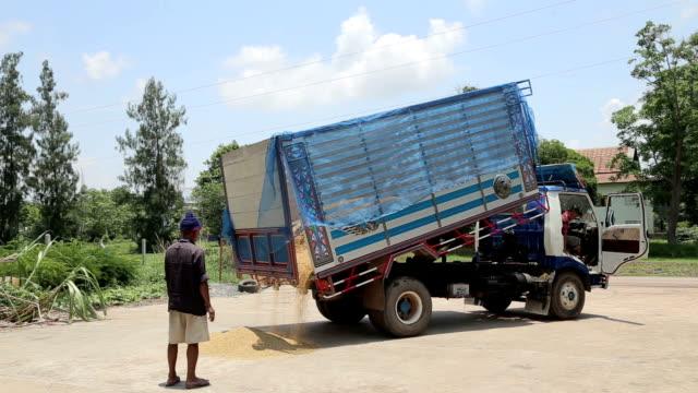 dump truck - hay truck stock videos & royalty-free footage