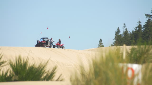 dune buggy on sand dunes - dune buggy stock videos and b-roll footage