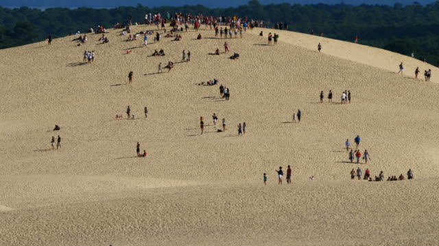 dune du pilat, gironde,nouvelle aquitaine, france - gironde stock videos and b-roll footage