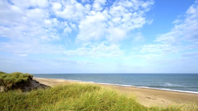 dune landscape in the summer, hantsholm, north sea, nordjylland, north jutland, denmark - nordsee stock-videos und b-roll-filmmaterial