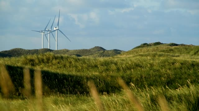 vídeos de stock, filmes e b-roll de dune landscape with wind turbines in the summer, hvide sande, ringkobing fjord, north sea, midtjylland, central jutland, denmark - dinamarca