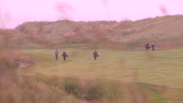 dunes w/ marram grass soft fg pan golf course nestled between coastal dunes ws unidentifiable golfers caddies walking right on fairway exclusive... - links golf stock videos & royalty-free footage