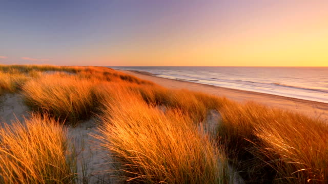 dunes and beach at sunset on texel island, the netherlands - north sea stock videos & royalty-free footage