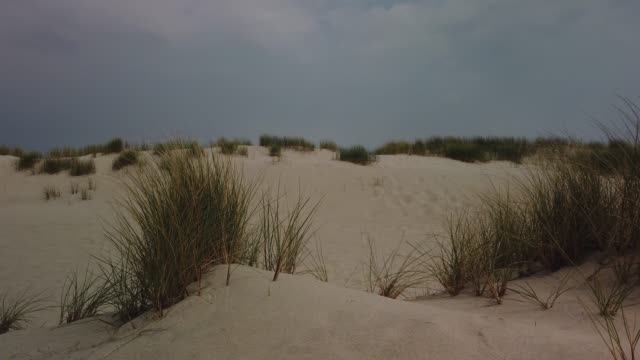 dunes on the island of sylt - dünen in list auf sylt - tina terras michael walter stock videos & royalty-free footage