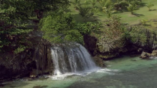 dunn's river falls cascade into the caribbean sea in jamaica. - tropischer baum stock-videos und b-roll-filmmaterial