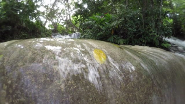 dunns river falls - jamaica stock videos and b-roll footage