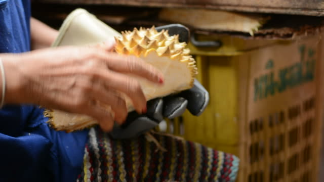 durian - penknife stock videos & royalty-free footage