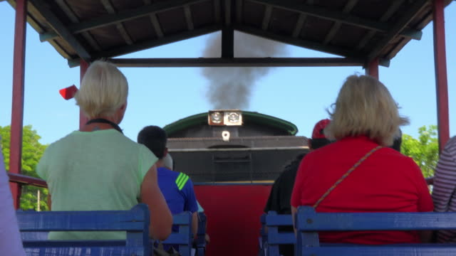 during the golden era of sugar production in cuba most transportation of the raw sugar cane was done in steam trains nowadays few working machines... - tourist train stock videos and b-roll footage