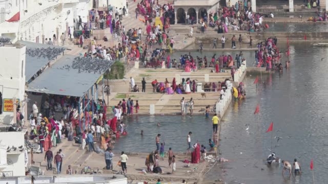 """during the later half of pushkar fair, religious activities dominate the scenario and devotees take dips in the holy """"sarovar"""" lake, as the sacred... - holy water stock videos & royalty-free footage"""