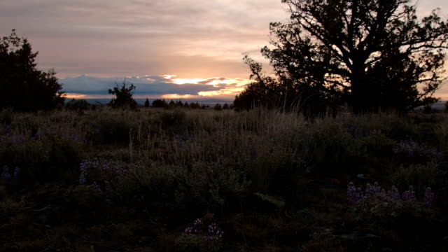 Dusk in spring at sunset great basin Steens Mountain Oregon 4