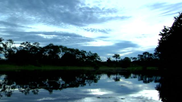 Dusk Reflection in the Amazon