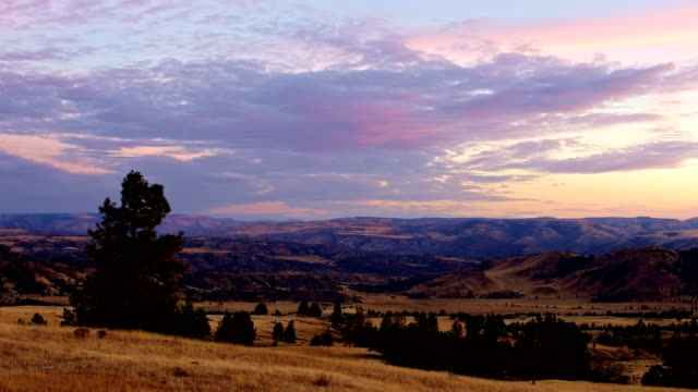 dusk sunset of juniper and old cattle ranch - horizon stock videos & royalty-free footage