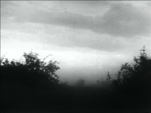 vidéos et rushes de b/w 1936 dust blowing thru bushes in storm / dust bowl / usa - 1936