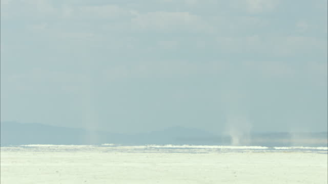dust devils spinning across desert horizon - 熱波点の映像素材/bロール