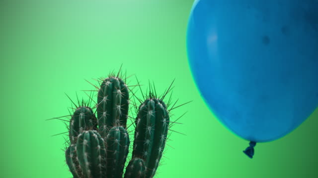 slo mo ld dust filled balloon popping when touching a cactus - cactus stock videos & royalty-free footage