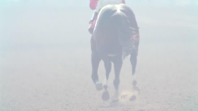 dust flies as horses race down the track at hollywood park in inglewood, california. - 競走馬点の映像素材/bロール