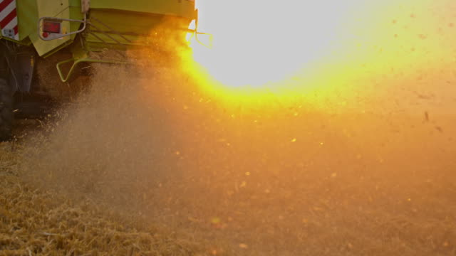 SLO MO Dust from a harvesting process
