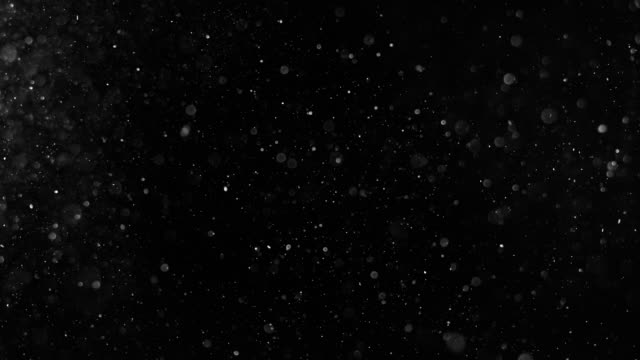 dust particles shot on black. 4k stock video. - defocussed stock videos & royalty-free footage