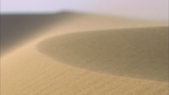 dust storm at sahara desert - dust storm stock videos & royalty-free footage