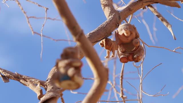 vídeos de stock, filmes e b-roll de ms rf dusty elephant, winnie pooh and lion toys hanging from tree branch / san pedro de valdivia, atacama desert, chile - animal de brinquedo