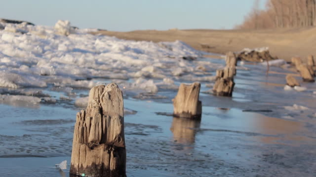Dutch angle skewed tracking shot of a frozen lake, snow, ice, trees and pilings. - Model Released - 1920x1080 - HD
