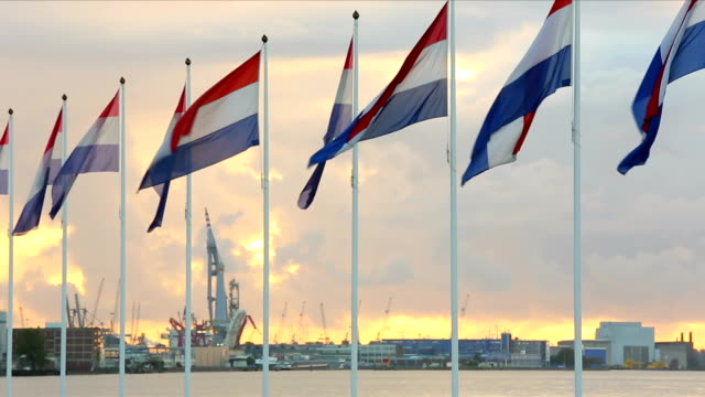 dutch flags with rotterdam's industry harbor in the background - shipyard stock videos & royalty-free footage