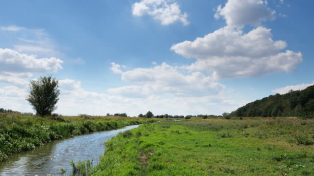 dutch polder scene - canal stock videos & royalty-free footage