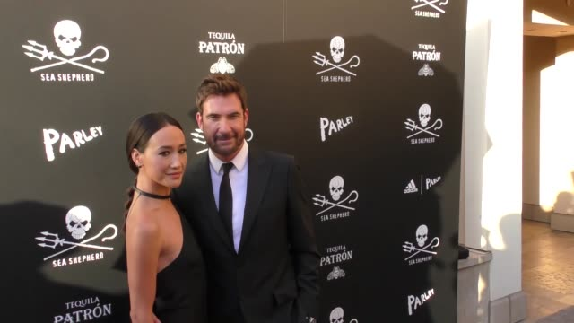 dylan mcdermott & maggie q at the sea shepherd conservation society's 40th anniversary gala for the oceans at montage beverly hills on june 10, 2017... - モンタージュ・ビバリーヒルズ点の映像素材/bロール