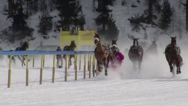 each february the upmarket swiss ski resort of st moritz hosts a series of unique horse races on a frozen lake the sport known as skijoring has... - nordic skiing event stock videos and b-roll footage