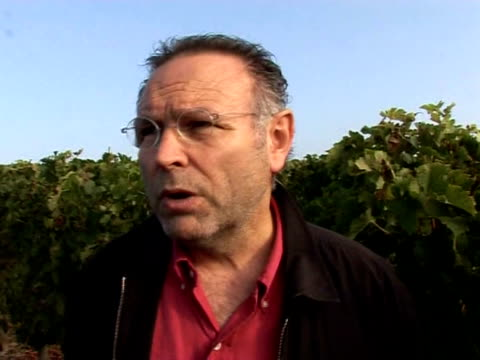 each year french customs agents take part in the annual wine harvest pessac gironde france - gironde stock videos and b-roll footage