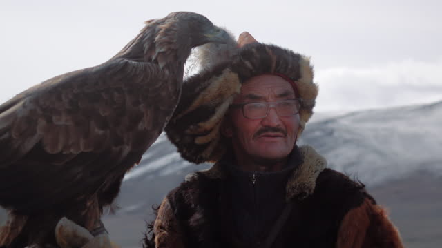 vidéos et rushes de eagle hunter posing with golden eagle - altai mountains, mongolia - aigle royal