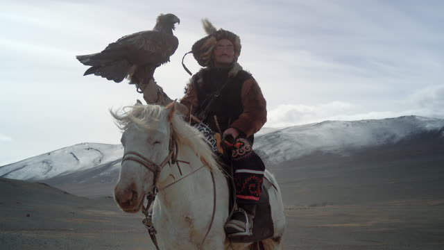eagle hunter posing with golden eagle - altai mountains, mongolia - indigenous culture stock videos & royalty-free footage