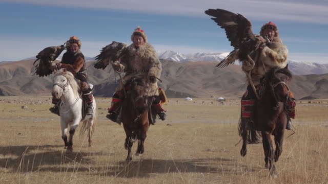 eagle hunters riding horses with golden eagles - altai mountains, mongolia - stamm stock-videos und b-roll-filmmaterial