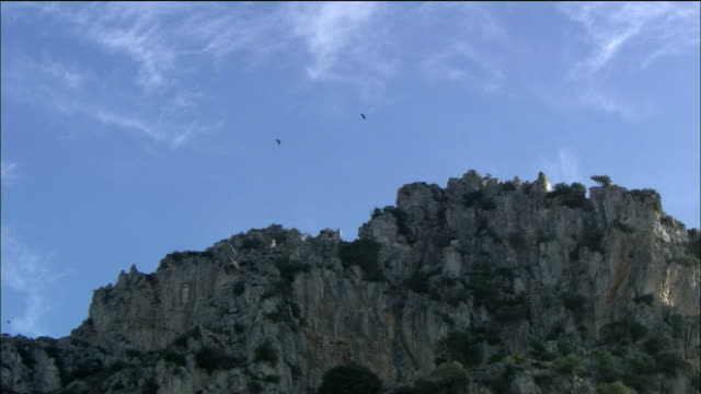 Eagles fly over rocky crag, Spain