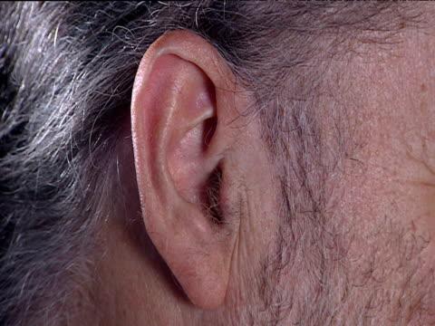 Ear of elderly man with grey hair