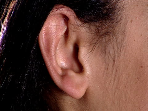 vídeos y material grabado en eventos de stock de ear of woman with black hair - oreja