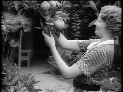B/W early 1930s woman holding branch of orange tree + smiling / California / newsreel