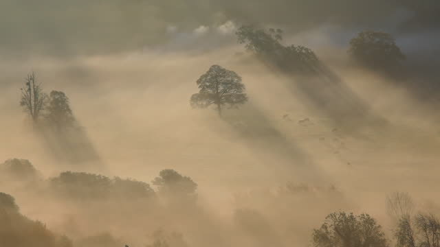 early morning autumn mist and chimney smoke from the village of uley, gloucestershire, uk - cotswolds stock videos & royalty-free footage