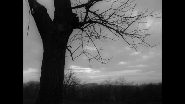 1968 early morning dawns over peaceful farmhouse - pennsylvania stock videos and b-roll footage