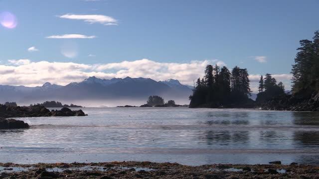 early morning landscape in sitka sound, alaska - アラスカ点の映像素材/bロール