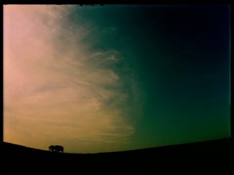 t/l early morning sky with tree on horizon, wispy clouds, fish eye lens - wispy stock videos & royalty-free footage