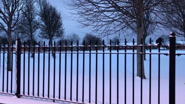 early snow scenes in dublin and groundsman, luke gray, clears the paths at glasnevin cemetery. - グランドキーパー点の映像素材/bロール