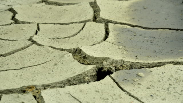 earth dries and cracks - dürre stock-videos und b-roll-filmmaterial
