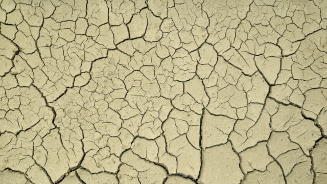 earth dries and cracks - drought stock videos and b-roll footage