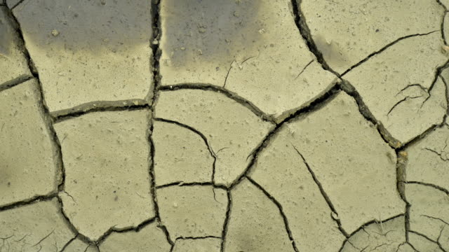 Earth dries and cracks