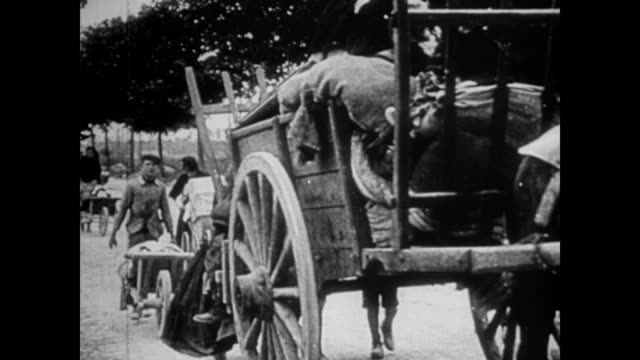 stockvideo's en b-roll-footage met / east prussian civilians being loaded onto the back of a wagon by german soldiers / wagon goes down the road followed by men and women pushing baby... - paardenkar