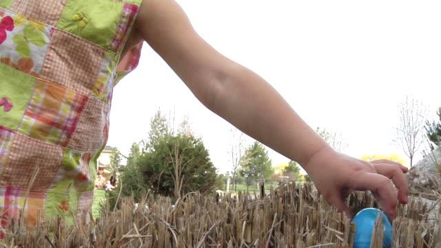 stockvideo's en b-roll-footage met easter egg hunt - ei