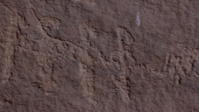 eastern desert rock art. pan-right on petroglyphs at hans winkler's famous site 26 in wadi abu wasil in the eastern desert. - extreme terrain stock videos & royalty-free footage