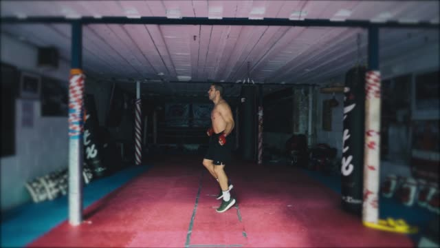 Eastern European Boxer training in a gym