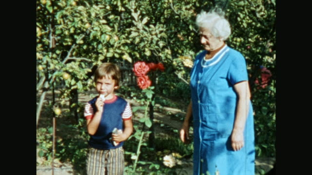 eastern german family at the garden, harvesting, grandmother with grandson, man pours, everyone tastes the vegetables / 1705004 - grandson stock videos & royalty-free footage